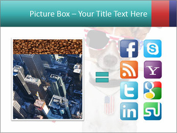 0000071299 PowerPoint Template - Slide 21
