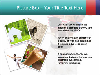 0000071299 PowerPoint Template - Slide 23