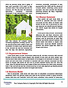 0000071299 Word Template - Page 4