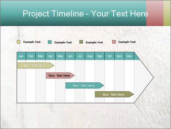 0000071301 PowerPoint Templates - Slide 25