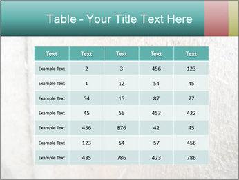 0000071301 PowerPoint Templates - Slide 55
