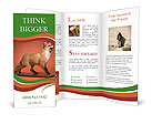 0000071311 Brochure Template
