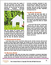 0000071316 Word Template - Page 4