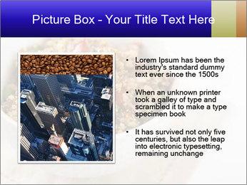 0000071319 PowerPoint Template - Slide 13
