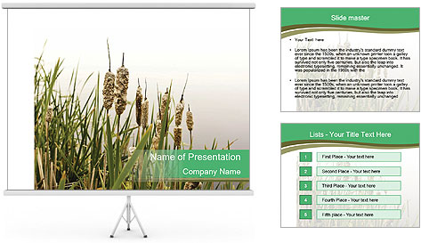 0000071326 PowerPoint Template
