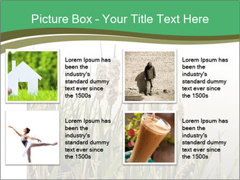 0000071326 PowerPoint Templates - Slide 14