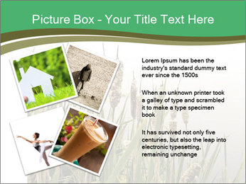 0000071326 PowerPoint Templates - Slide 23