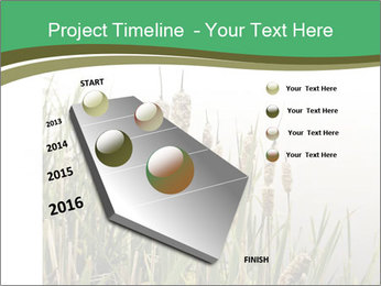 0000071326 PowerPoint Templates - Slide 26