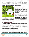 0000071327 Word Templates - Page 4