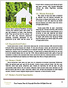 0000071329 Word Templates - Page 4