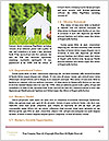 0000071331 Word Templates - Page 4