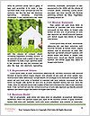0000071335 Word Template - Page 4