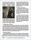 0000071344 Word Templates - Page 4