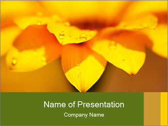 0000071345 PowerPoint Template