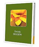 0000071345 Presentation Folder