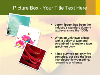 0000071345 PowerPoint Template - Slide 17