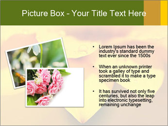 0000071345 PowerPoint Template - Slide 20