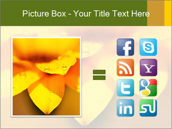 0000071345 PowerPoint Template - Slide 21
