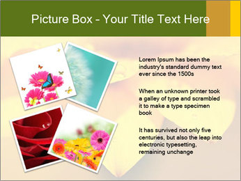 0000071345 PowerPoint Template - Slide 23