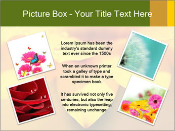 0000071345 PowerPoint Template - Slide 24