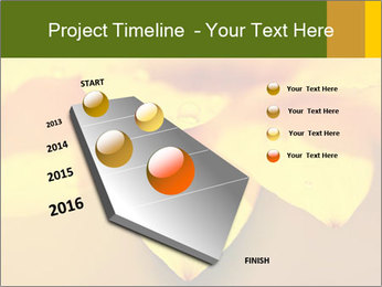 0000071345 PowerPoint Template - Slide 26