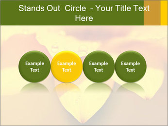0000071345 PowerPoint Template - Slide 76