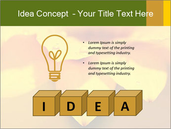 0000071345 PowerPoint Template - Slide 80