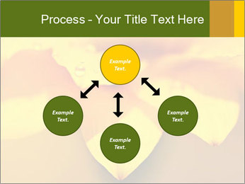 0000071345 PowerPoint Template - Slide 91