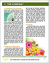 0000071345 Word Templates - Page 3