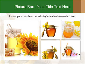 0000071353 PowerPoint Template - Slide 19