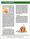 0000071353 Word Template - Page 3