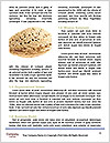 0000071357 Word Templates - Page 4