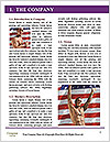 0000071369 Word Template - Page 3