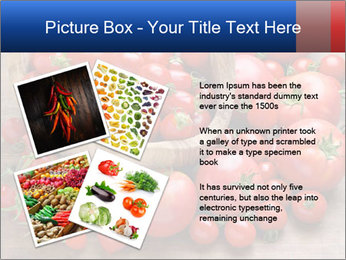 0000071371 PowerPoint Templates - Slide 23