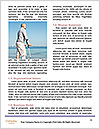 0000071375 Word Templates - Page 4