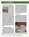0000071376 Word Template - Page 3