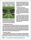 0000071377 Word Templates - Page 4