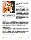 0000071378 Word Templates - Page 4