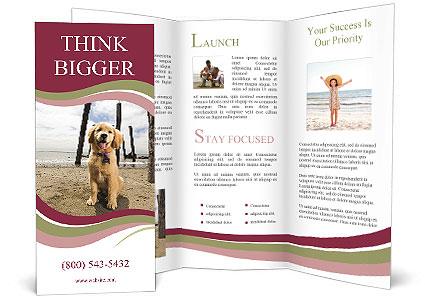 0000071380 Brochure Template