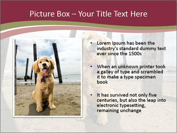 0000071380 PowerPoint Template - Slide 13