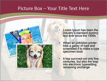 0000071380 PowerPoint Template - Slide 20