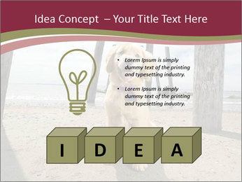 0000071380 PowerPoint Template - Slide 80
