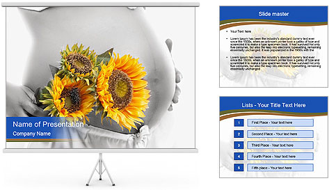 0000071382 PowerPoint Template