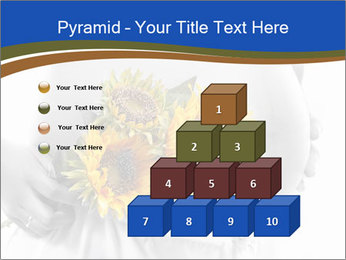 0000071382 PowerPoint Template - Slide 31