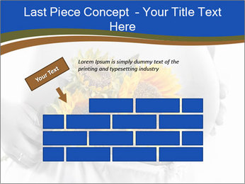 0000071382 PowerPoint Template - Slide 46