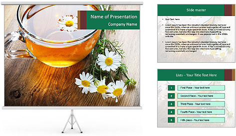 0000071384 PowerPoint Template