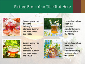 0000071384 PowerPoint Template - Slide 14
