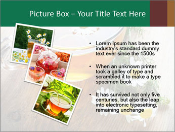 0000071384 PowerPoint Template - Slide 17