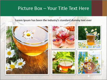 0000071384 PowerPoint Template - Slide 19