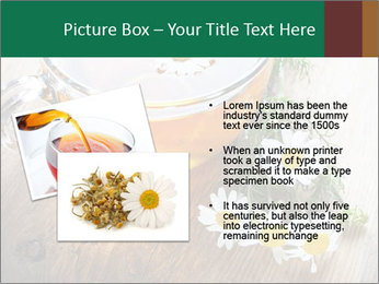 0000071384 PowerPoint Template - Slide 20